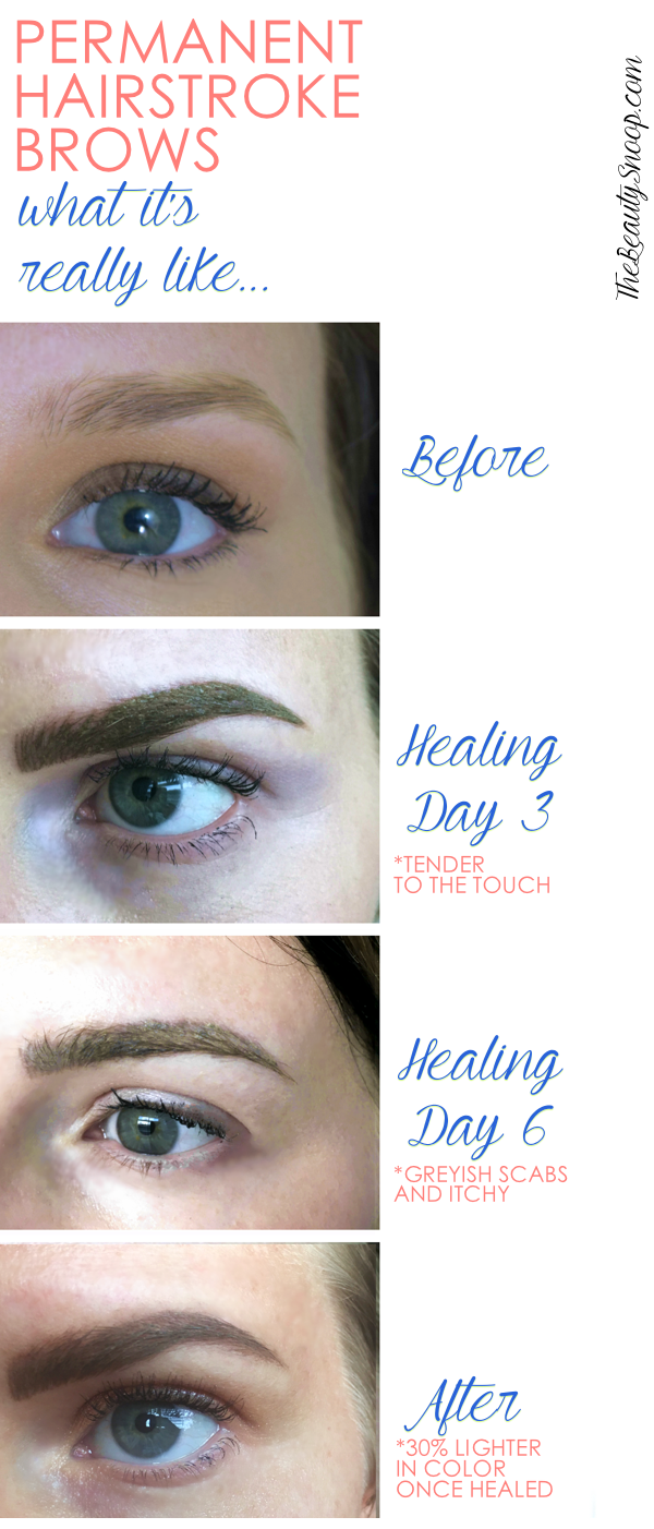 Real Life Permanent Microblade Brows Makeupgood Face Brows