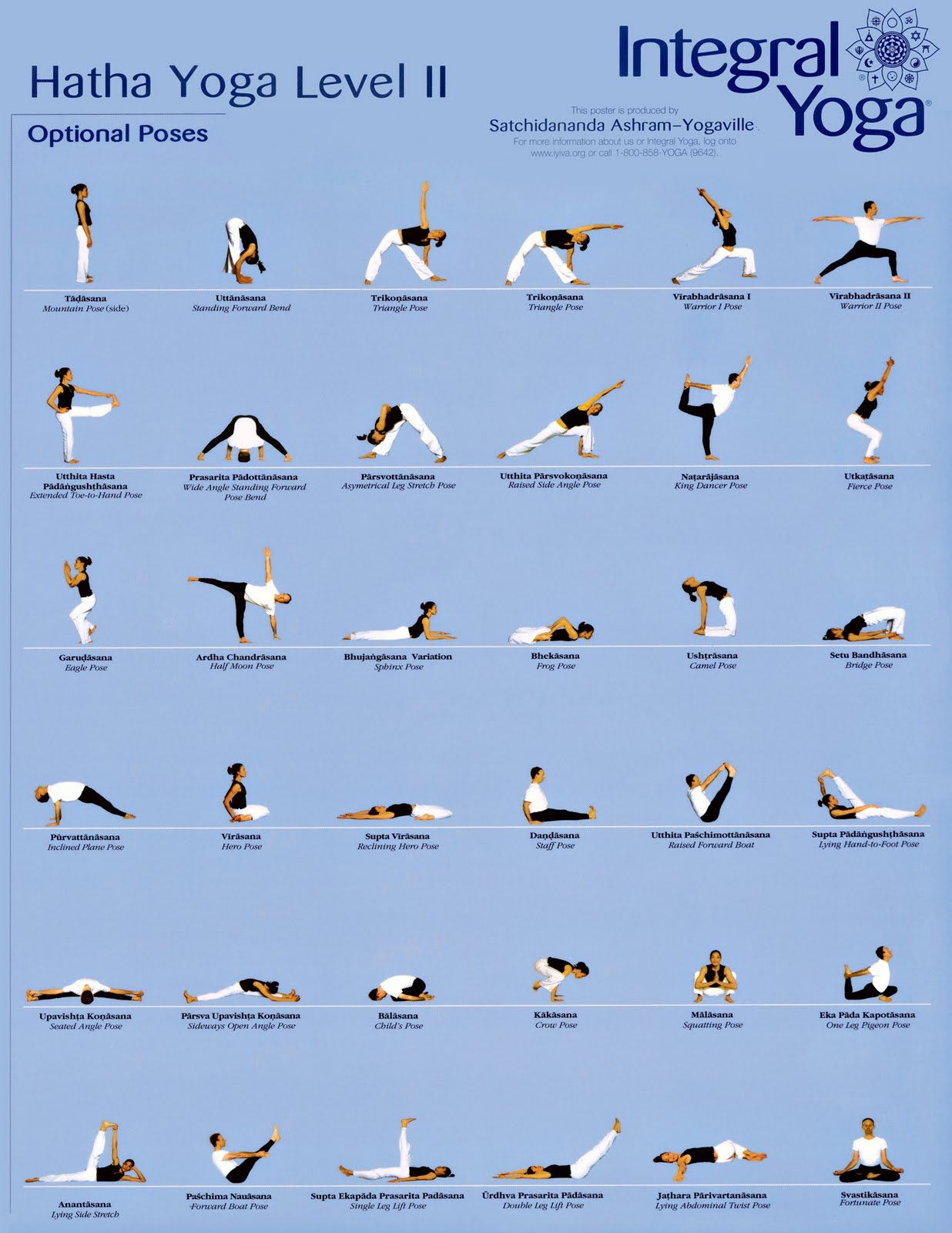 Hatha Yoga Poses For Seniors
