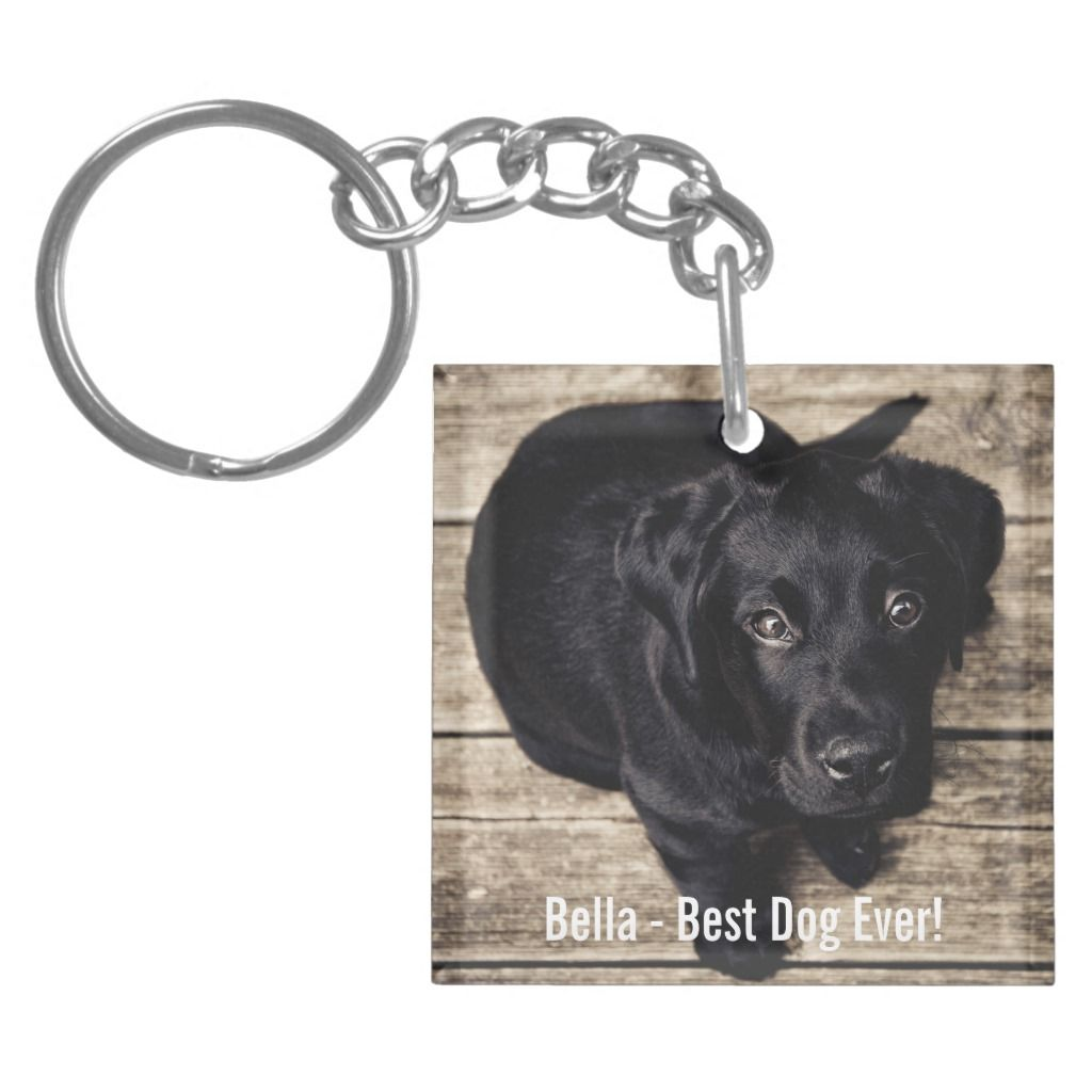 Personalized Black Lab Dog Photo And Dog Name Keychain, Adult Unisex, Pale Blue / Blanched Almond / Linen Personalized Black Lab Dog Photo and Dog Name Keychain, Adult Unisex, Pale Blue / Blanched Almond / Linen Black Things black color dog names