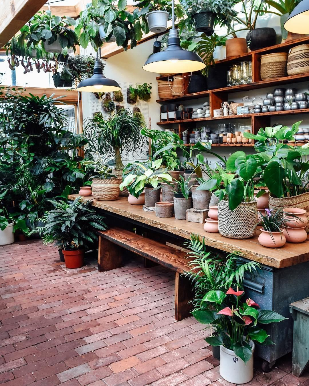 24 Plant Shops that Will Attract Any Plant Lover Plants