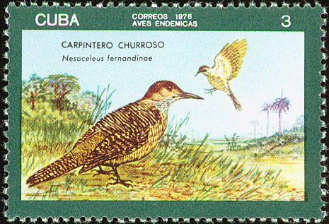 Znaczek: Cuban Flicker (Colaptes fernandinae) (Kuba) (Local Birds) Mi:CU 2146,Yt:CU 1940