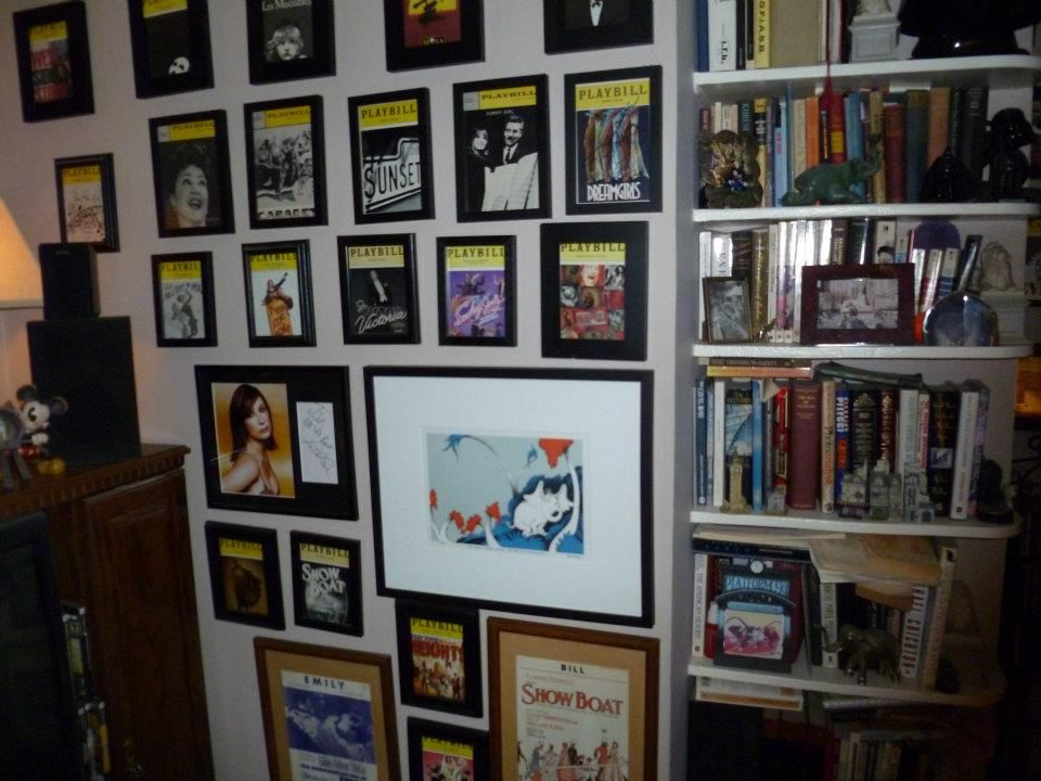 A Great Way To Display All Of The Playbills From Shows You Have