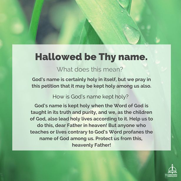 Hallowed Be Thy Name  Lutheran Bible Study Guide And Bible