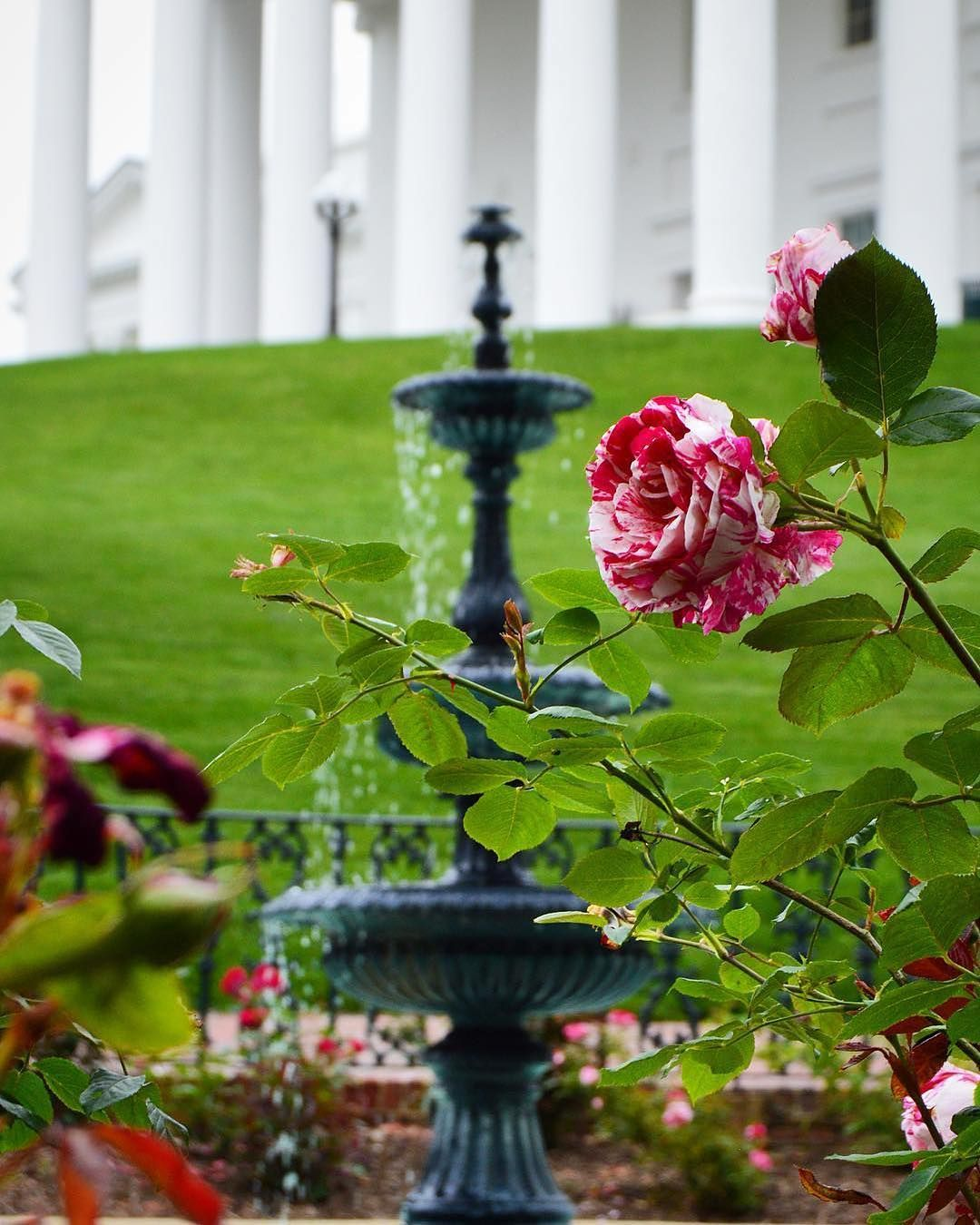 Eye Catching Sights At The Virginia State Capitol Rva