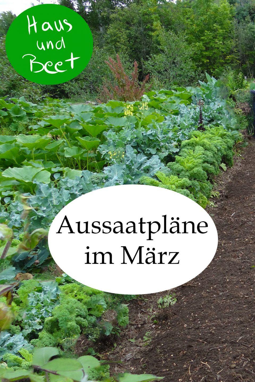 Aussaatpläne im März – Jetzt ist alles möglich - Haus und Beet #gemüsepflanzen