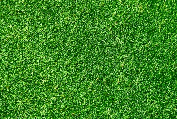 Green Grass Hd Grass Textures Grass Background Grass Vector