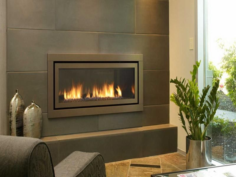 Modern Gas Fireplaces Designs With Plant Warm