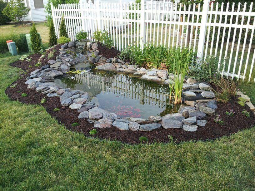 Backyard pond. Mulch buildup on the side | Waterfalls ...