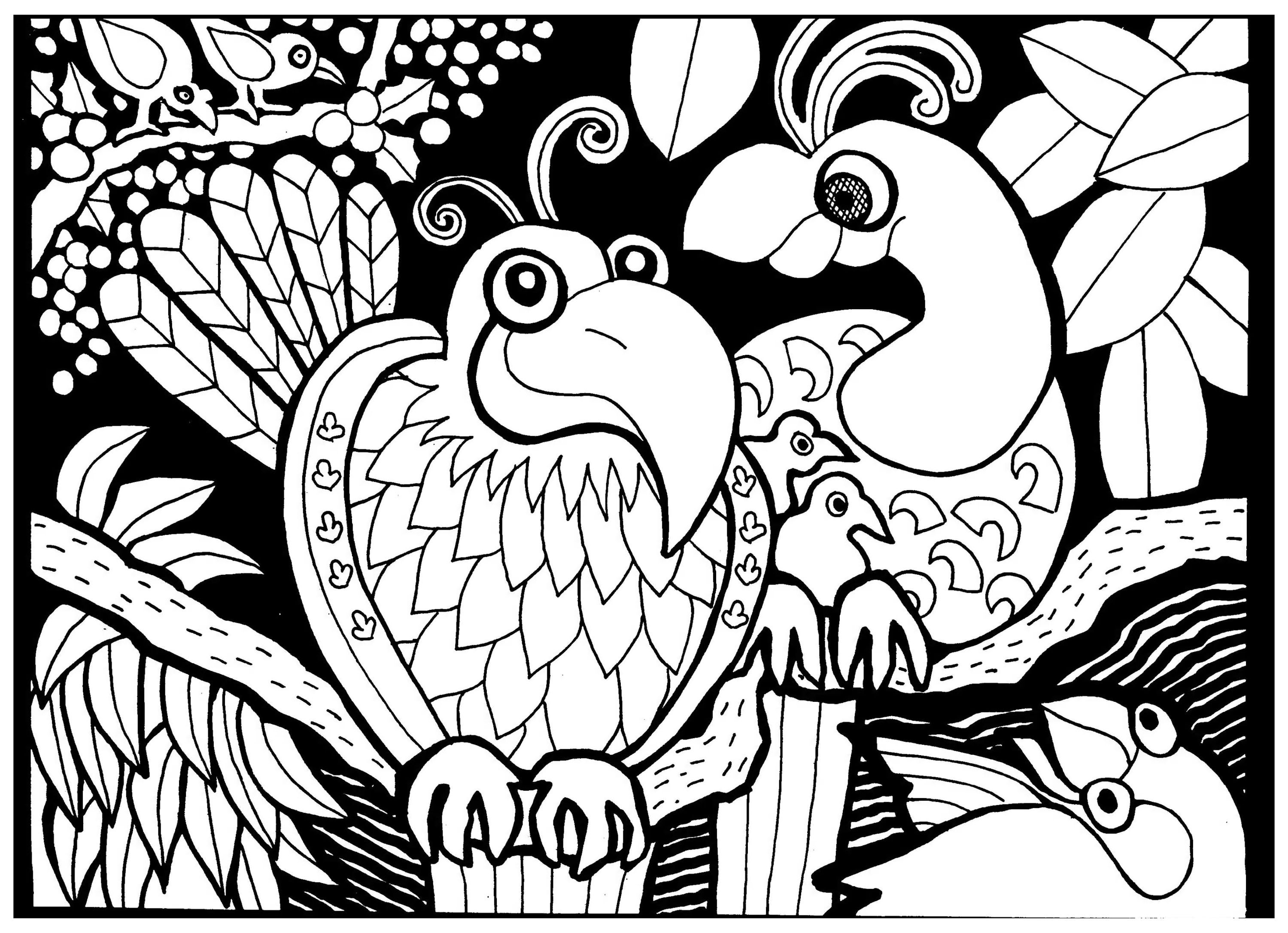 To Print This Free Coloring Page Adult Africa Birds