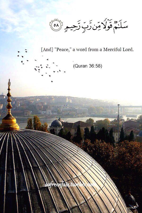 36:58 سَلَامٌ قَوْلًا مِّن رَّبٍّ رَّحِيمٍ Salamun qawlan min rabbin