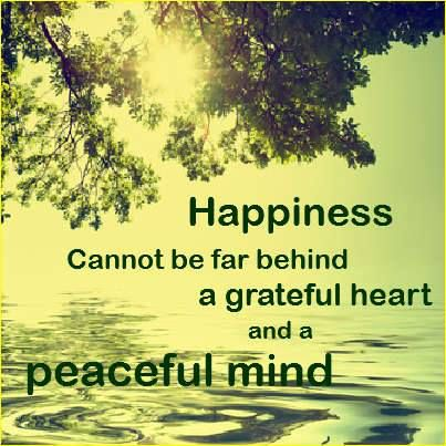 Peaceful Love Quotes Best Pinisabell Nielsen On Peace Love & Happiness  Pinterest