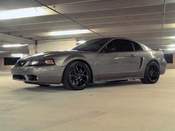 99 04 Saleen Mustang Mustang Cobra Terminators Picture35 Gray