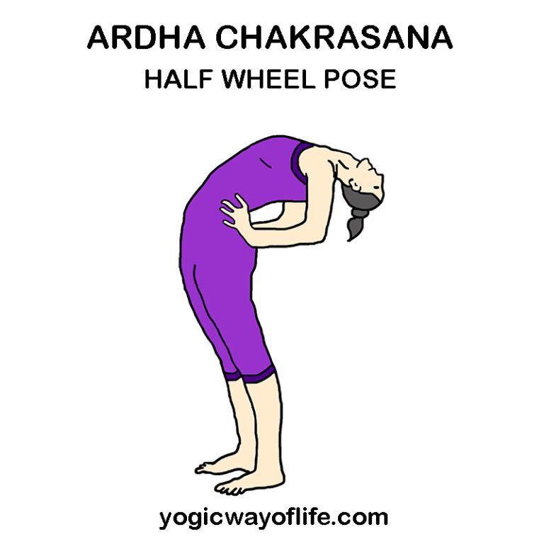 Ardha Chakrasana Half Wheel Pose Yoga Poses Advanced Yoga Poses Wheel Pose