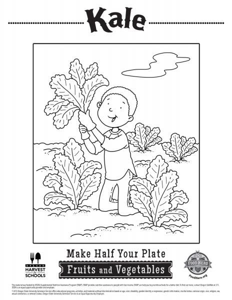 Kale Coloring Pages Food Hero Great Vegetable Coloring Sheets