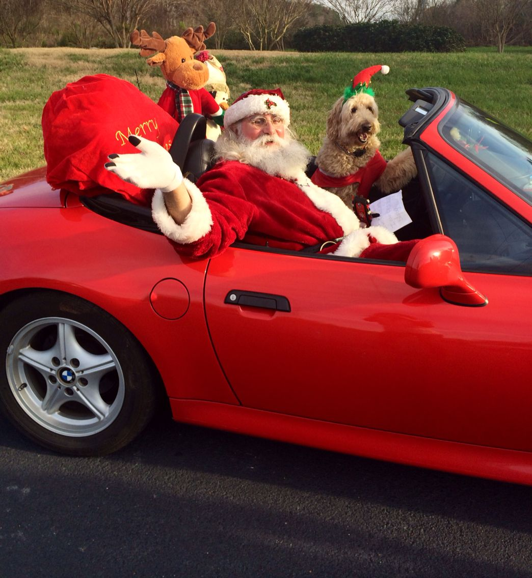 Max Welsh The Goldendoodle Driving Santa Goldendoodle Max