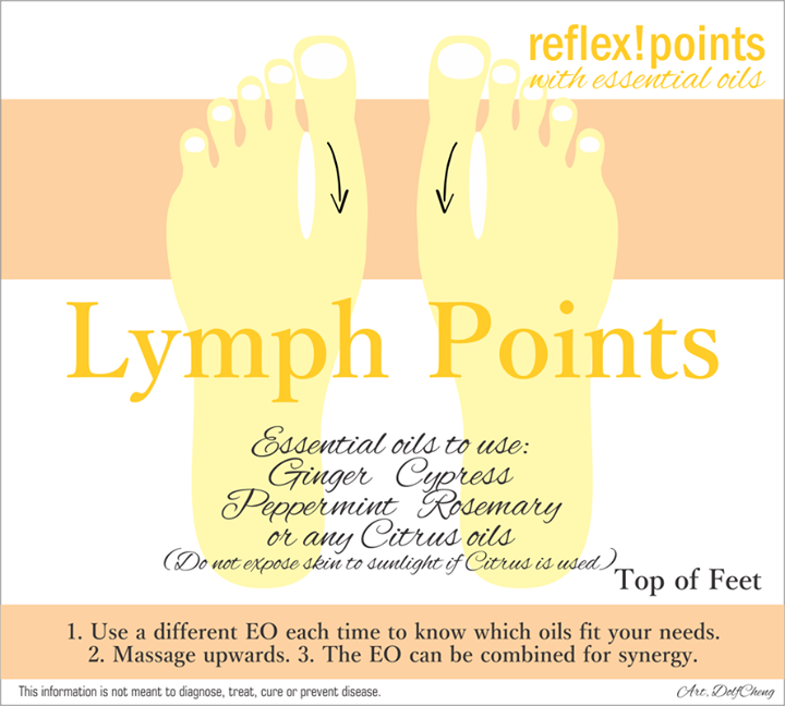 Reflex Points And Essential Oils For Lymph Points On Top Of Feet To Support Lymphatic System Gi Essential Oils For Nausea Ginger Essential Oil Essential Oils