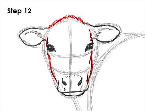 How To Draw A Cow Face Google Search Koeien Schilderen Koeien
