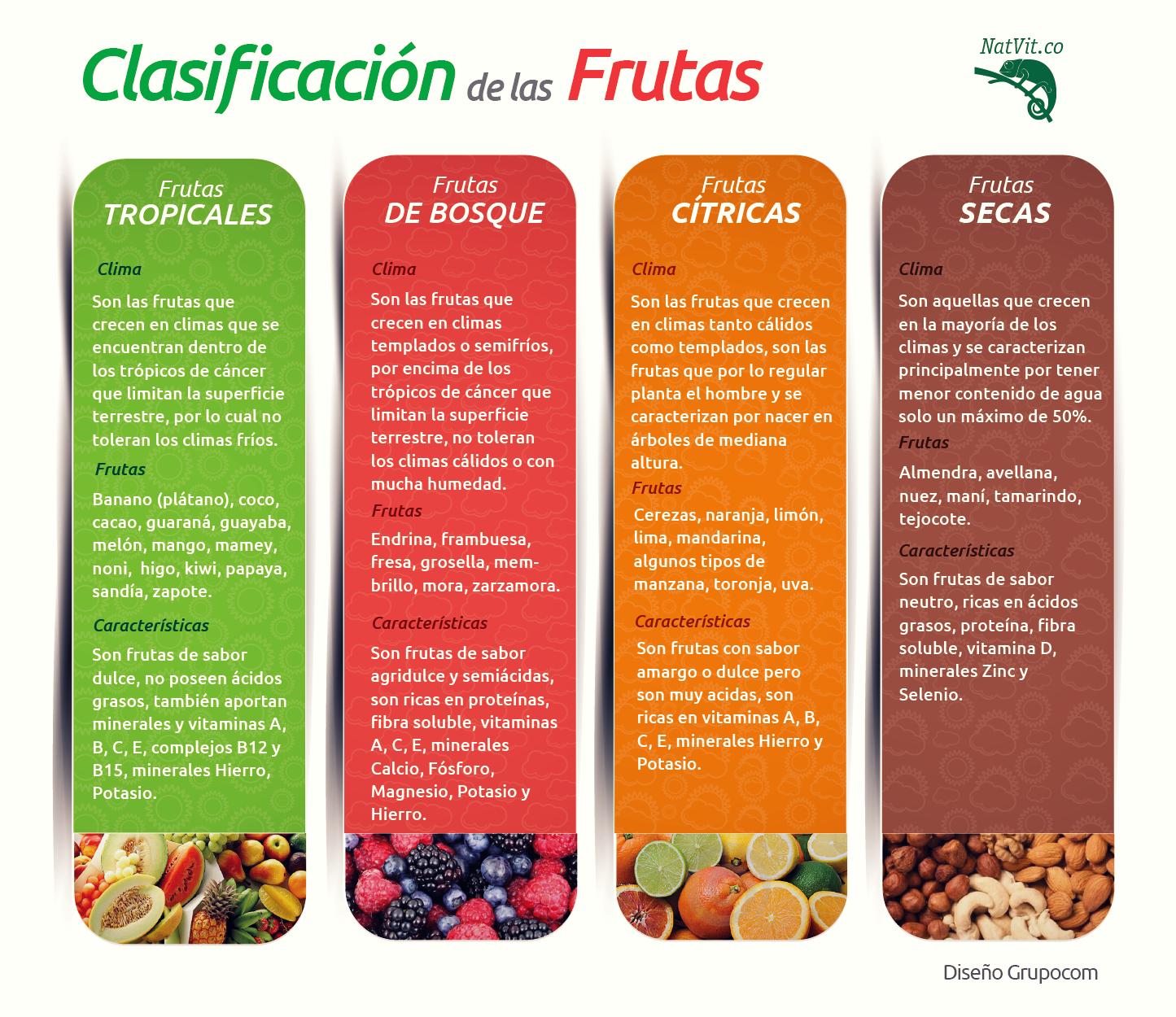 Clasificaci n de las frutas frutas alimentos nutricion - Semillas de frutas y verduras ...