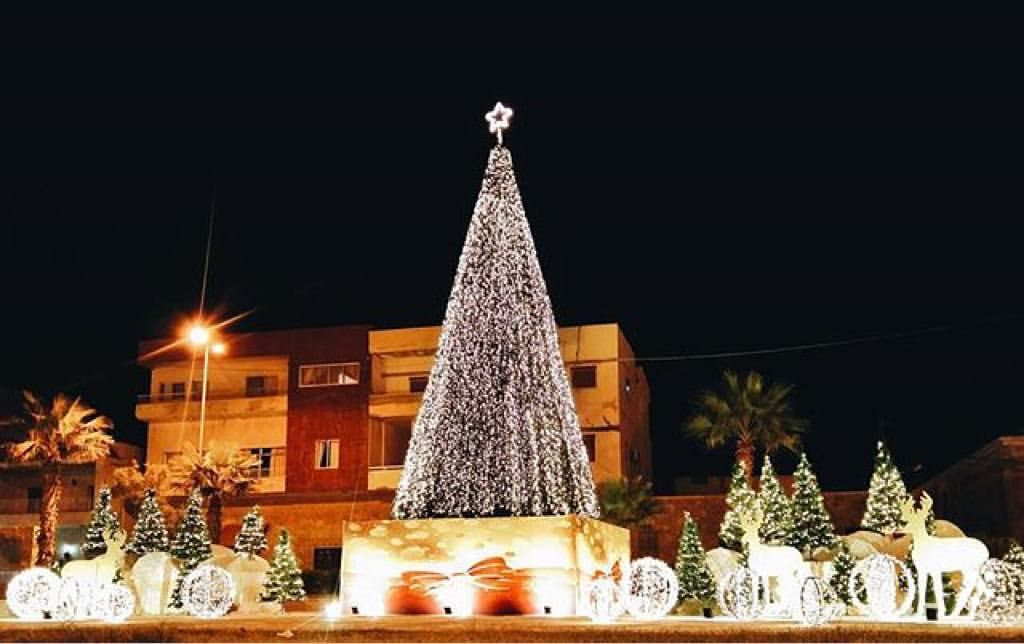 We Are Lebanon Beautiful Christmas Trees Beautiful Christmas Lebanon