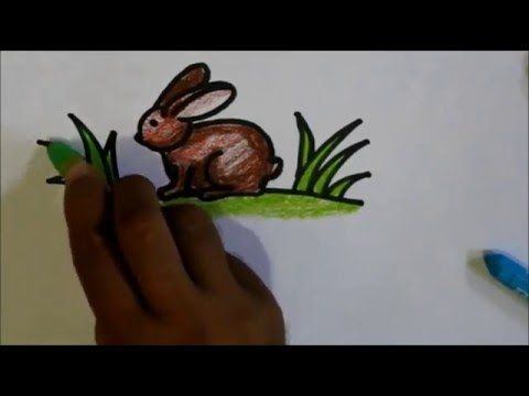 How To Draw A Rabbit For Kids Tutorial Video Cara Menggambar