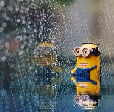 Rain rain go away | Minions | Minions, Minions love, Cute ...