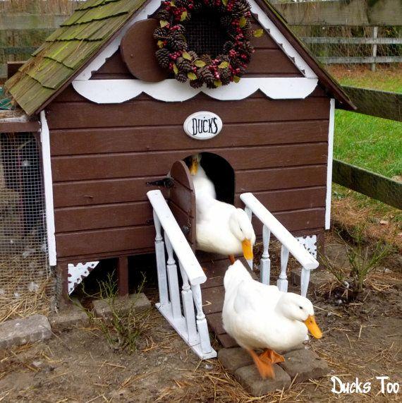 Gingerbread Duck House Plans PDF