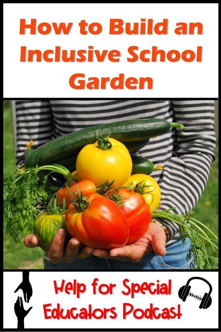 6 Steps to Build An Inclusive School Garden is part of Special education classroom, Special education resources, School garden, Special education teacher, Life skills classroom, Early childhood special education - primary classroom