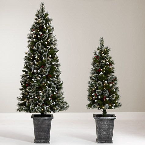 buy john lewis chamonix 45ft pre lit potted christmas tree online at johnlewis - Buy Christmas Tree Online