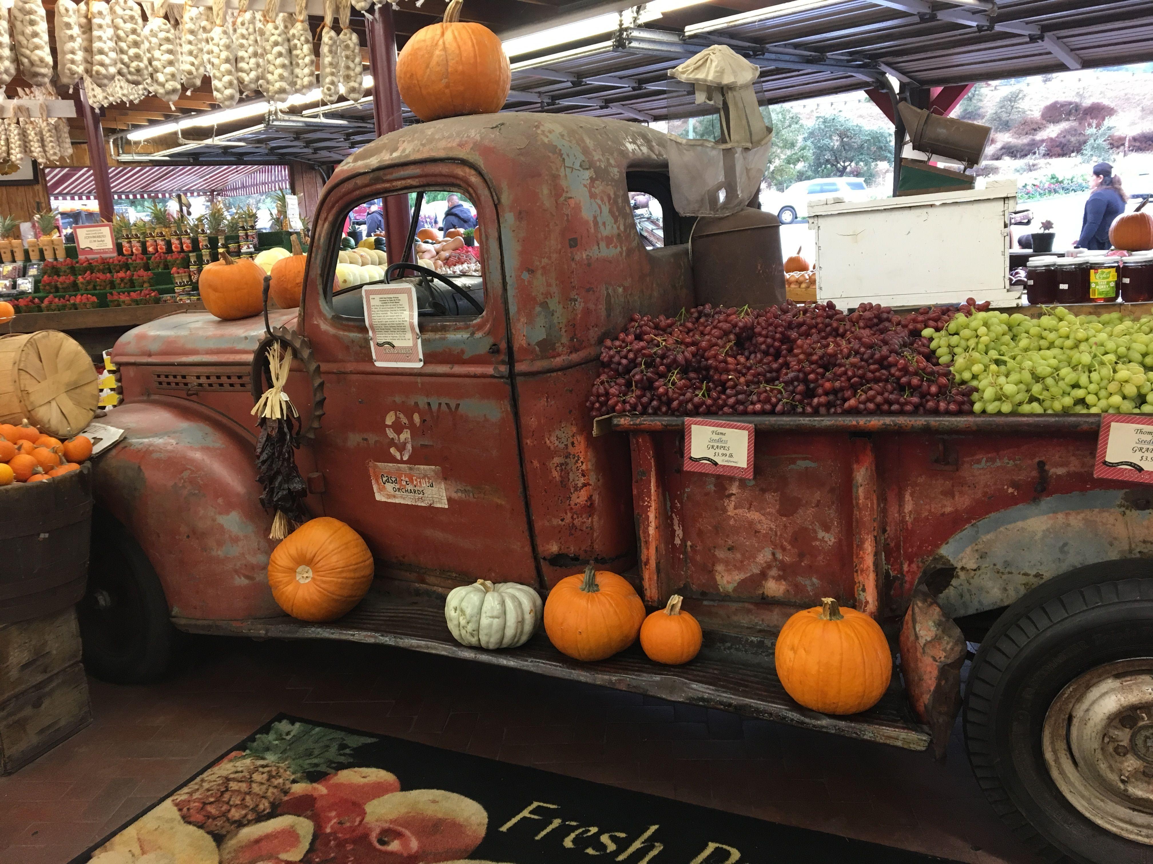Casa de Fruta pumpkin patch