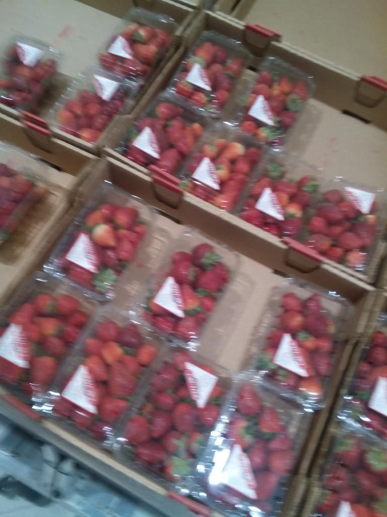 #strawberries are delicious #fruitaddict #freahfruits #cleaneats pic.twitter.com/ZN9HyIxcMV
