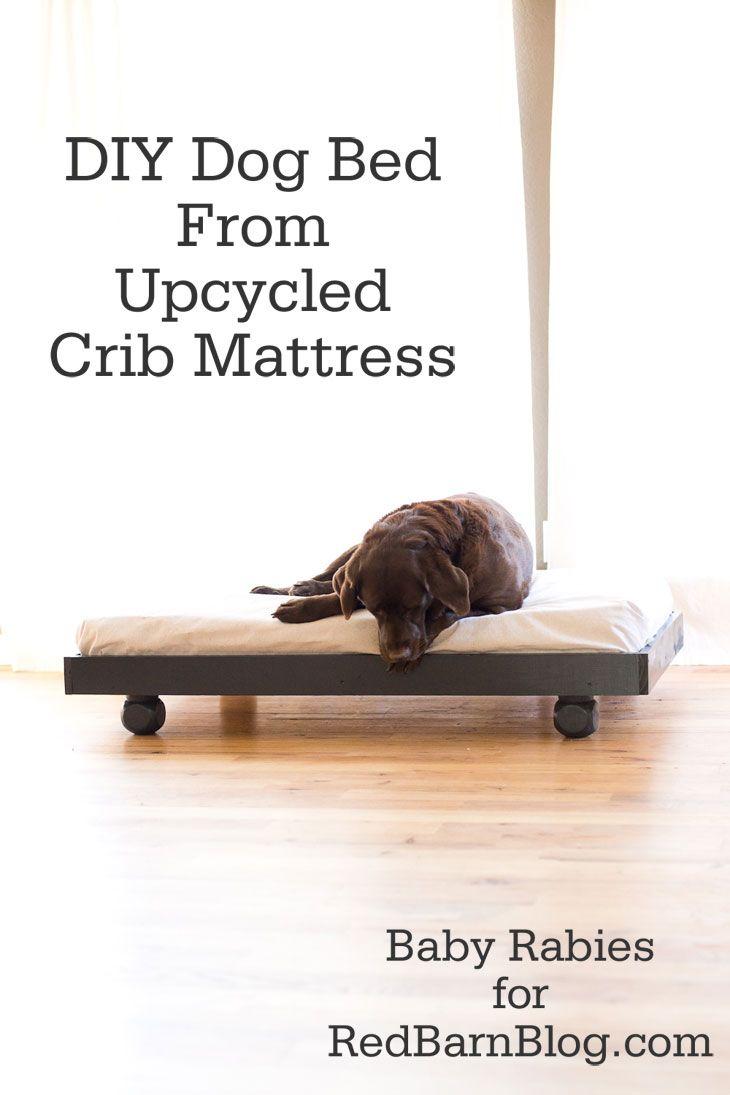 Diy Dog Bed From Upcycled Crib Mattress Diy Dog Bed Diy Dog Stuff Dog Bed Furniture