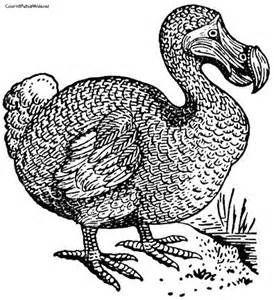 Dodo Bird Coloring Pages