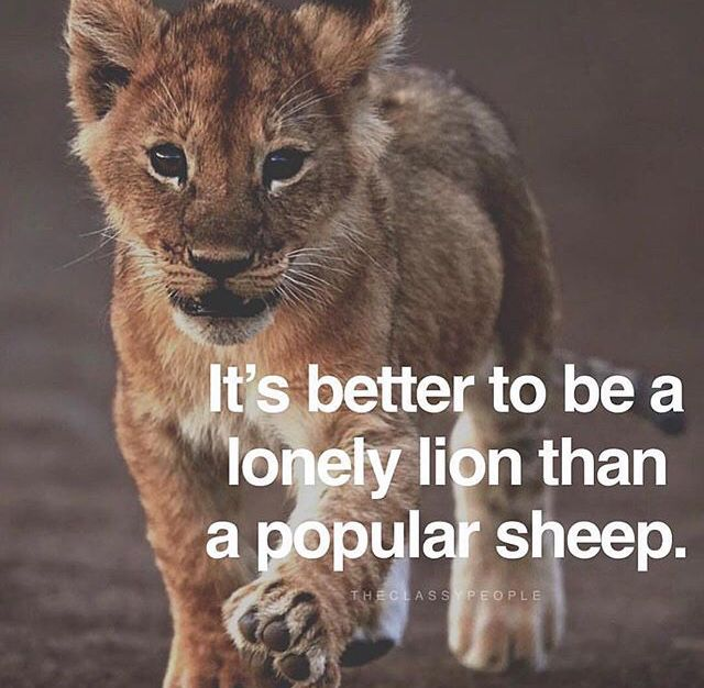 Top 25 Motivational Quotes For Entrepreneurs To Keep You: Life Quotes, Lion Quotes, Entrepreneurship Quotes