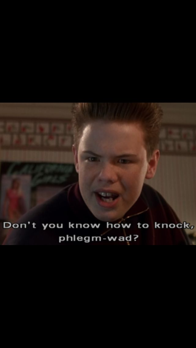 Funny Quotes From Home Alone