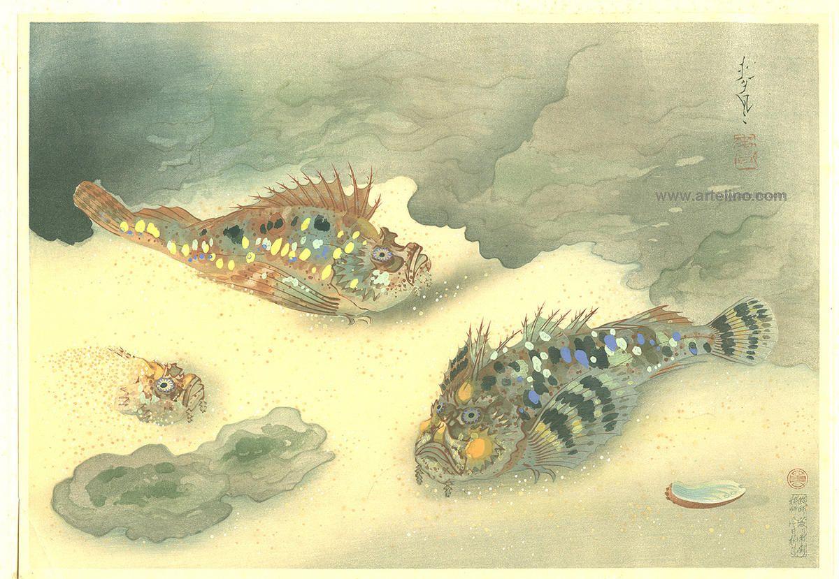 Bakufu Ohno: Scorpion Fish- Okoze — オコゼ