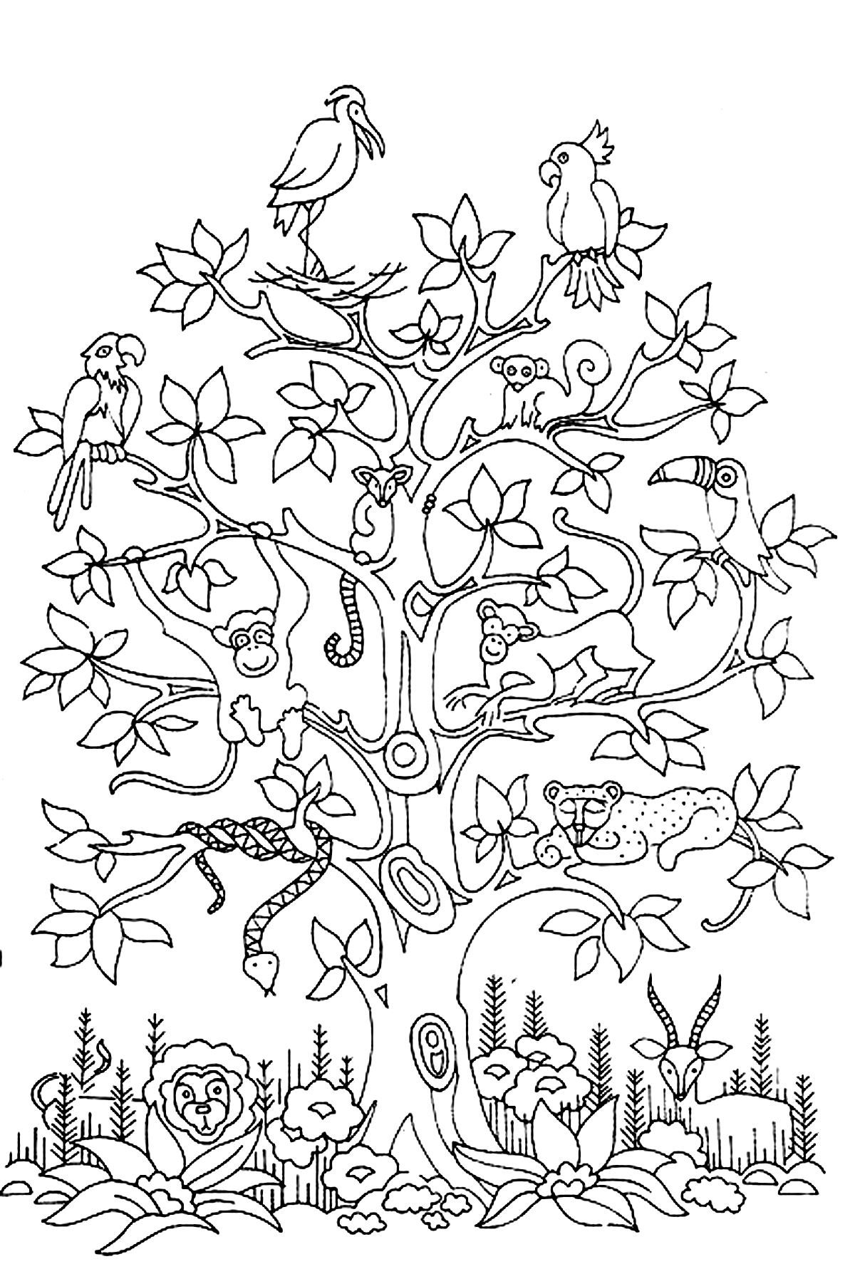 free coloring page «coloring-adult-difficult-tree-bird-butterflies ... - Coloring Pages Monkeys Trees