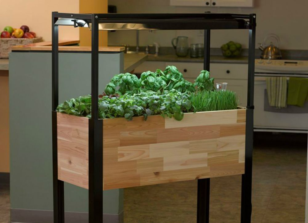 Your Easiest-Ever Garden: 7 Planters That Do All the Work | Gardens ...