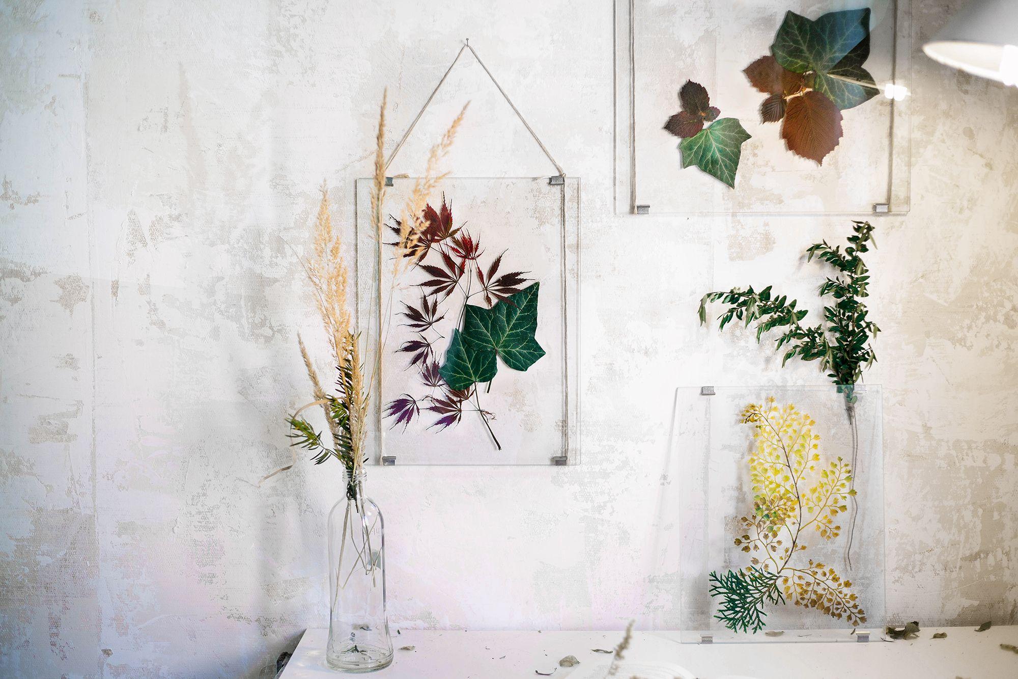 Diy wandgestaltung bl tter im transparenten rahmen do it yourself crafting ideas - Wandgestaltung diy ...