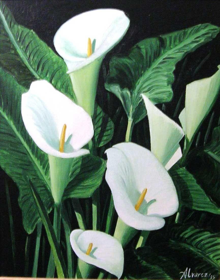 Como pintar calas en tela imagui rosas pinterest for Tela geotextil para jardines