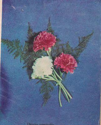 El Blog de Flor Mar y Ojito: CLAVEL DE TELA. COMO HACERLO. recopilaciòn de FLor...