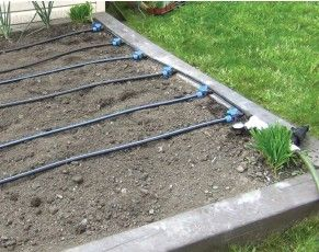Ensemble d 39 irrigation goutte goutte irrigation du for Arrosage jardin potager