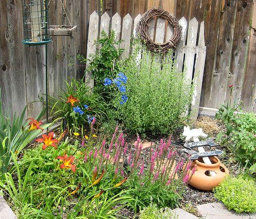 Shown are Day Lilies, Delphiniums, Aster, Sedum, Coriopsis, Purple
