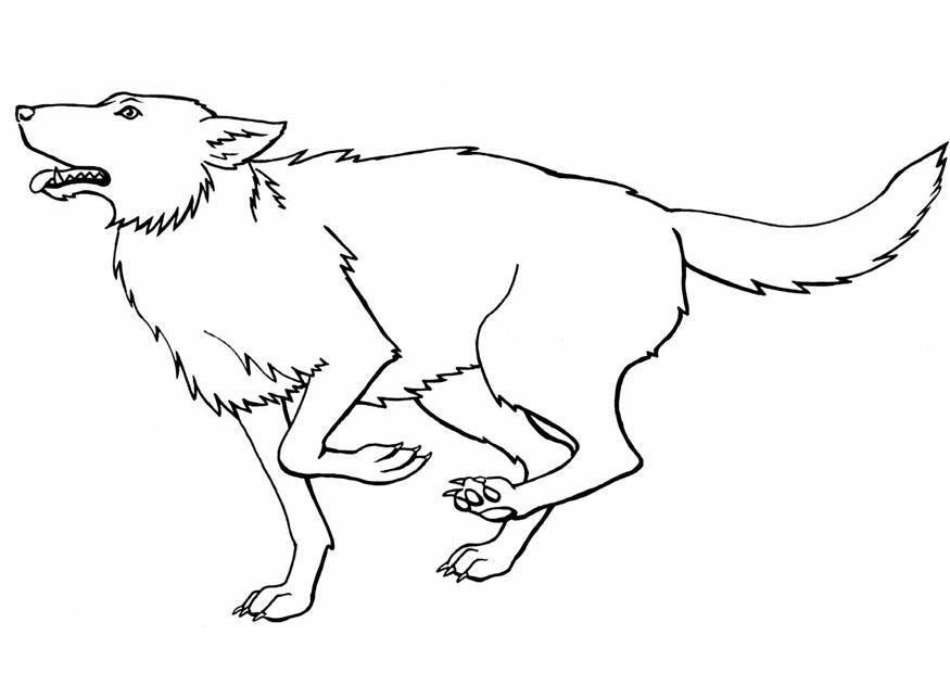 Free Printable Wolf Coloring Pages For Kids Malvorlagen