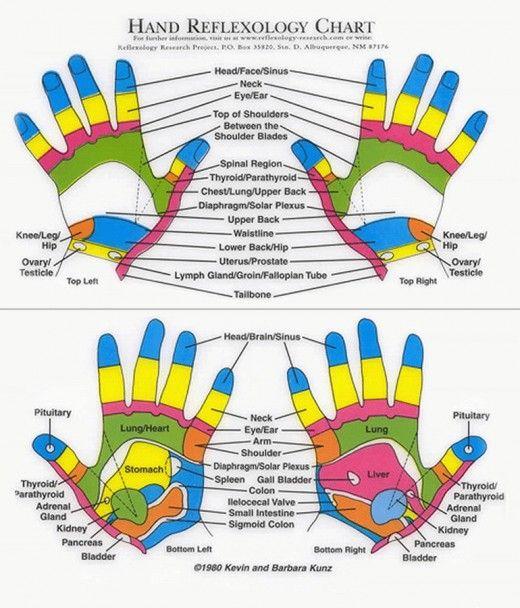 Pin On Reflexology