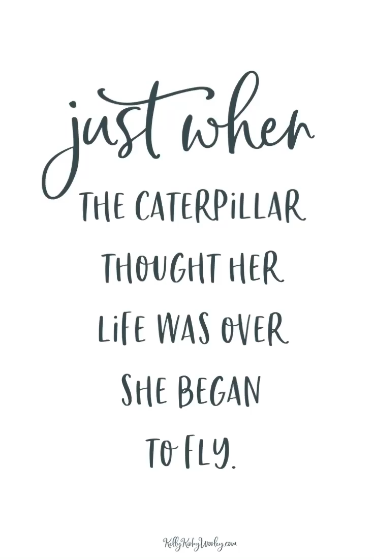 Just When The Caterpillar Thought Her Life Was Over She Began To Fly.