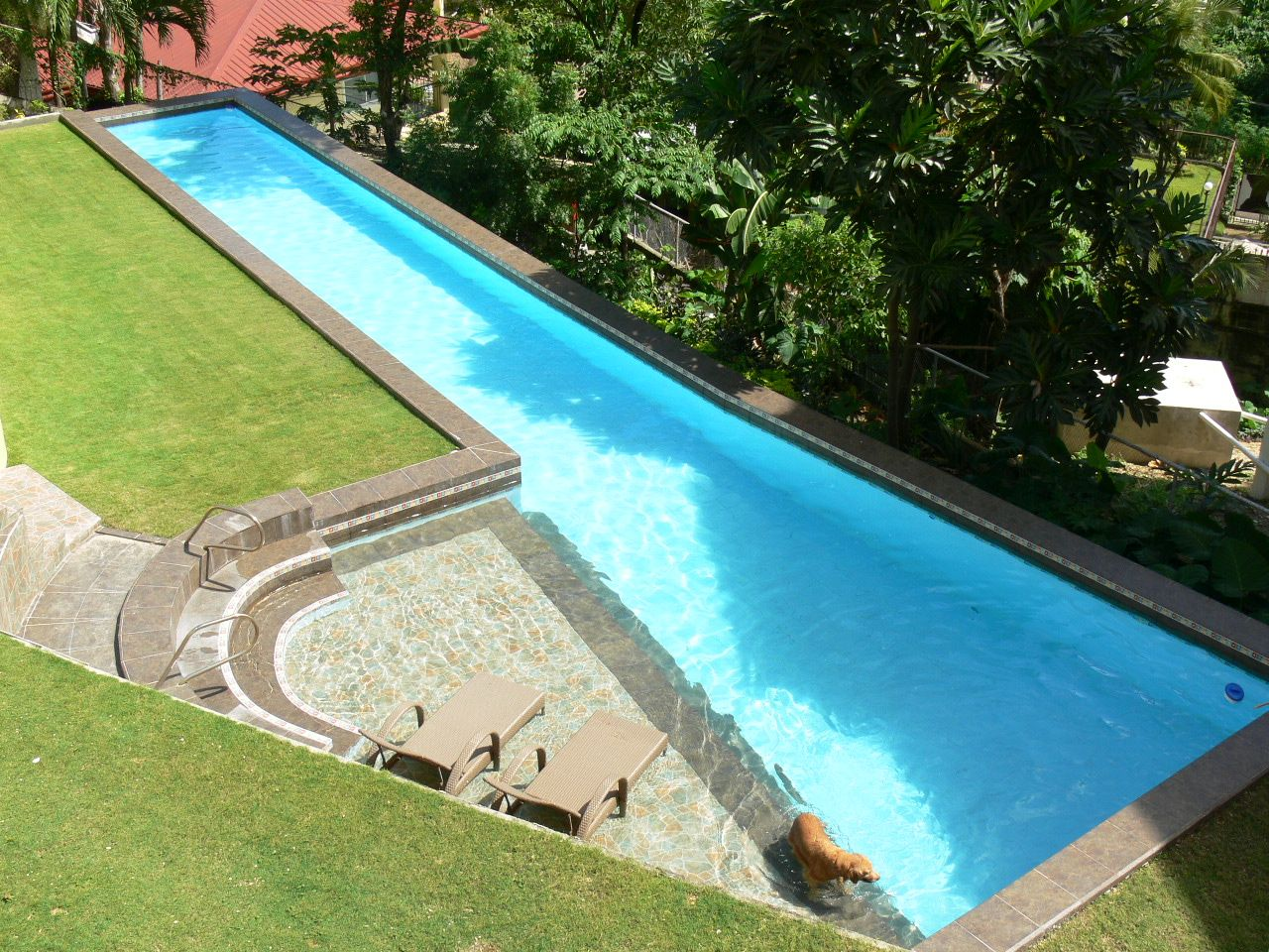 Page Not Found Cebu Homes Lap Pools Backyard Lap Pool Designs