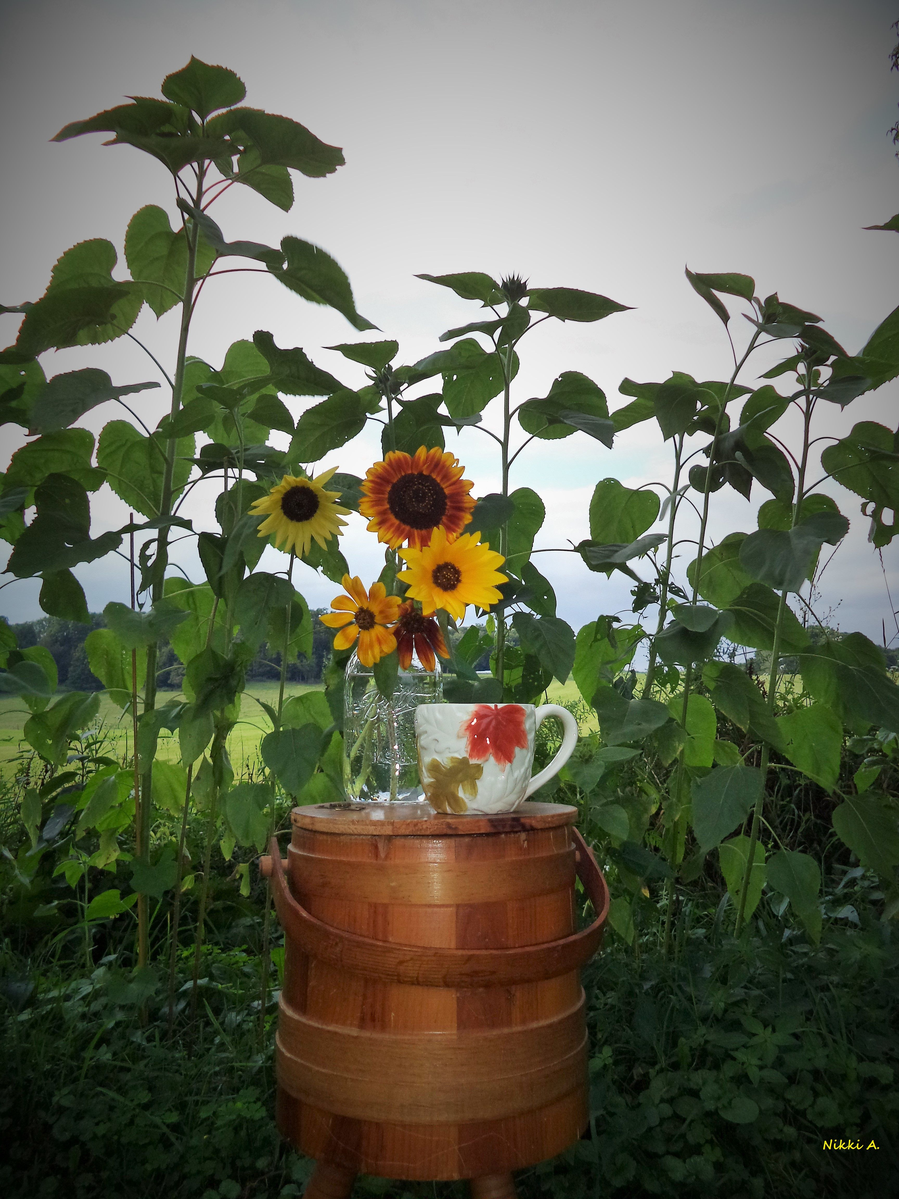 A few of my favorite thingsSunflowers coffee