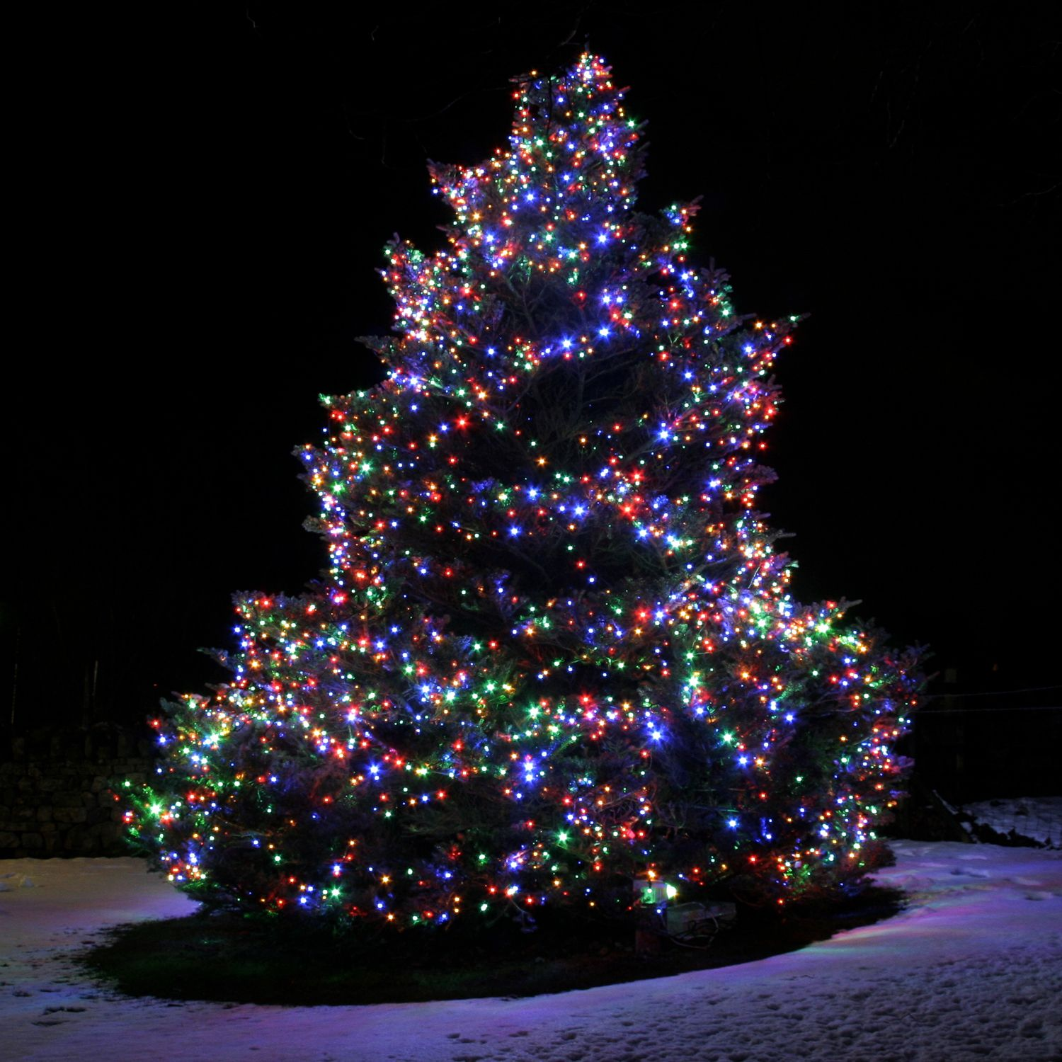 Cant wait to put the christmas tree up 1 december too early the top benefits of connectable christmas lights fairy lights fun aloadofball Choice Image