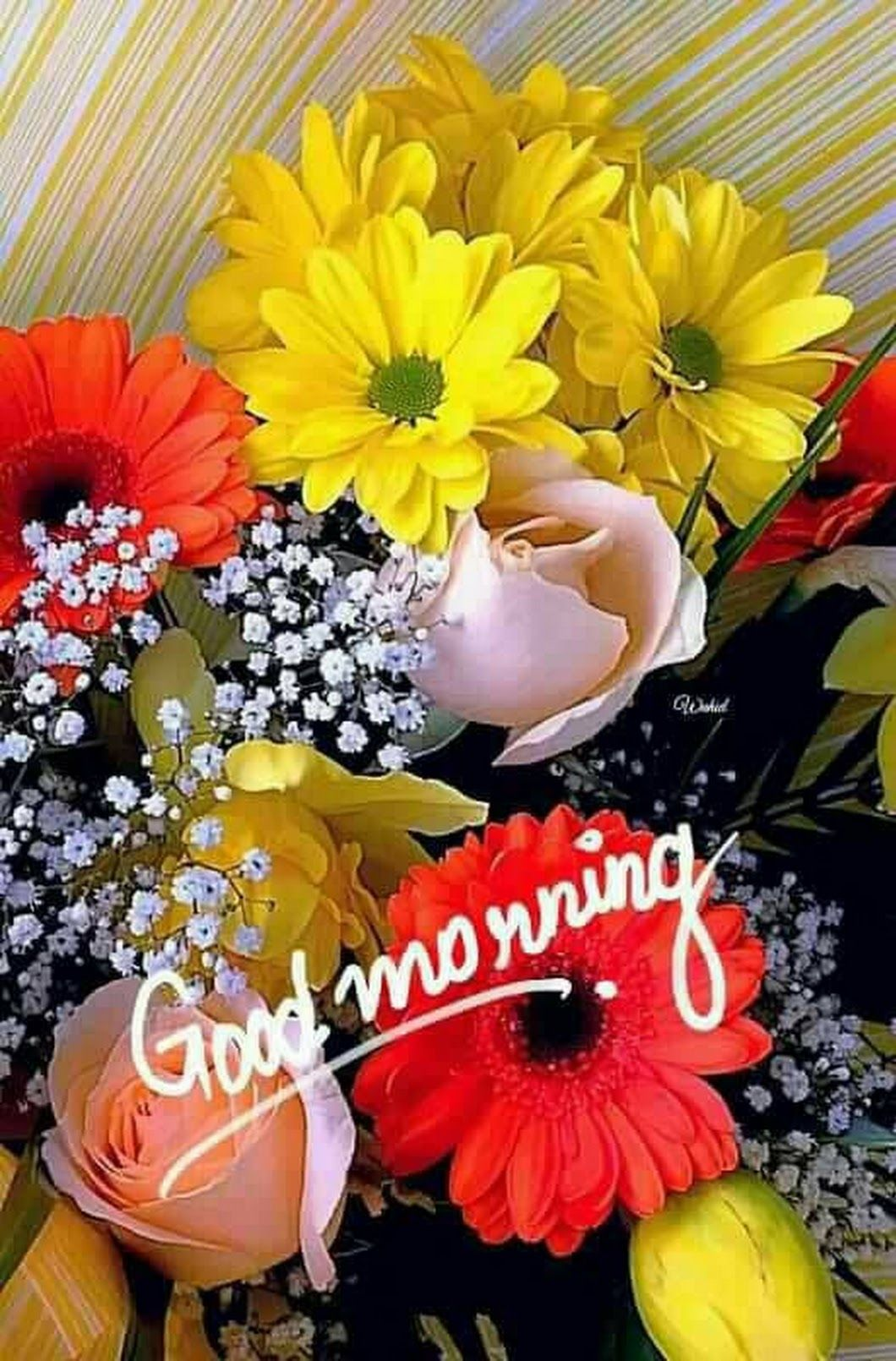 +926 {Lovely} Romantic Good Morning Images Photos Pics to