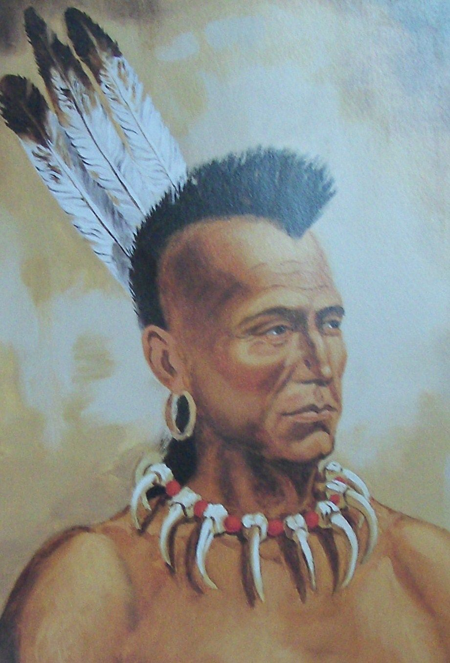 retro: a mohawk is a mohawk pink or grey | native americans